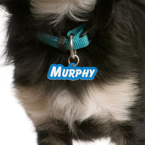 Goofy Type | Personalized Pet ID Tags For Dogs & Cats | Blank Sheet
