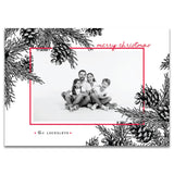Pine Cones | Holiday Cards and Christmas Cards by Blank Sheet