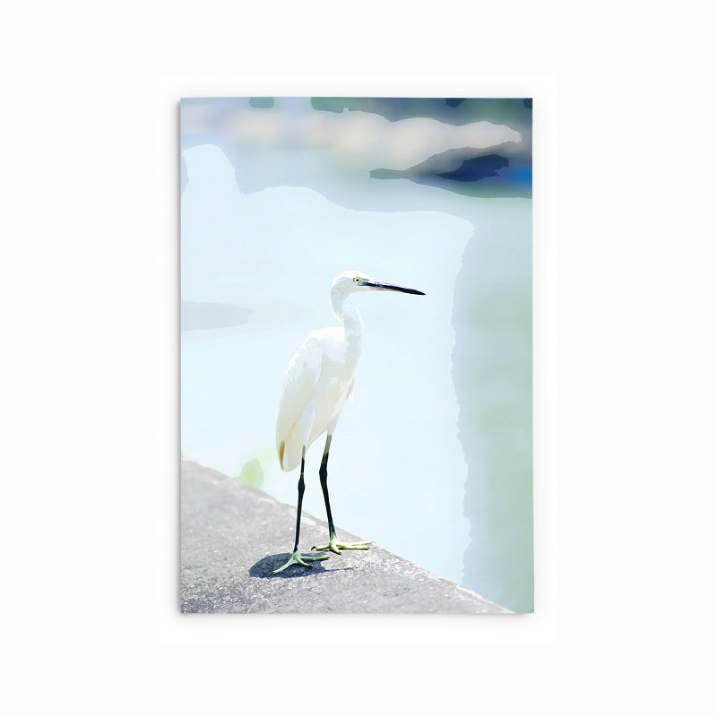 Little Egret | Hong Kong Birds Note Cards by Blank Sheet