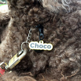 Pet ID Tag Upgrade | Baked Paint Metal Trigger Snap Hook and Bell