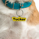 Round Type | Personalized Pet ID Tags For Dogs & Cats | Blank Sheet