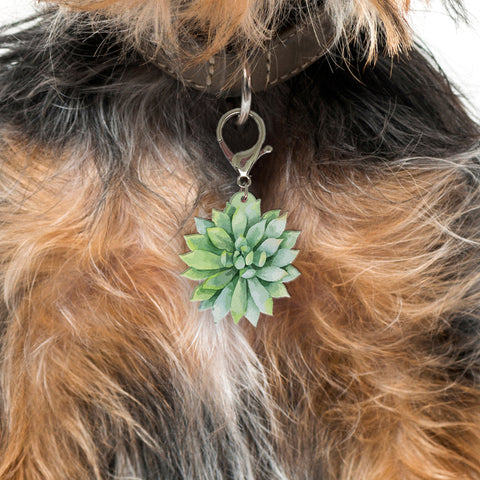 Agave - Blooms & Blossoms Pet ID Tag