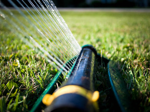 P. McConnell Contracting, Etobicoke Landscaping, Watering Grass