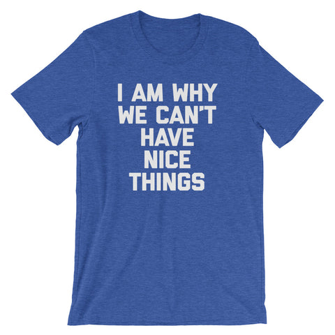 I Am Why We Can't Have Nice Things T-Shirt (Unisex)