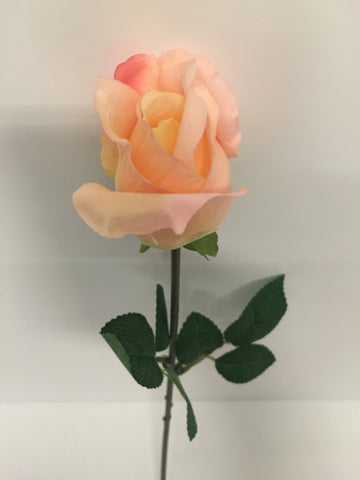 Light Pink Rose Bud