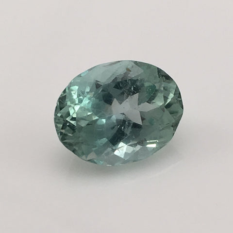 9.3 carat Carolina Hiddenite Gemstone - Colonial Gems