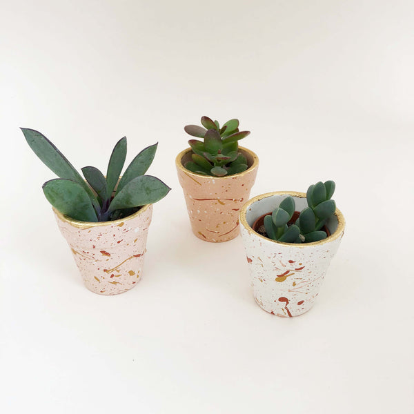 Mini Splatter Plant Pots