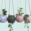 Round Splatter Hanging Planters - Choose your colours