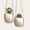 Gold Triangle and Leather Plant Hangers