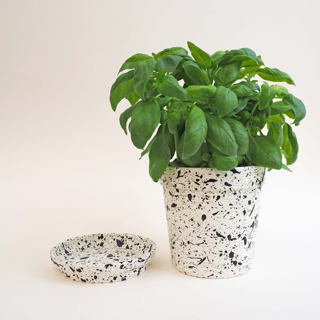 Medium Splatter Plant Pot & Dish - Choose your colours
