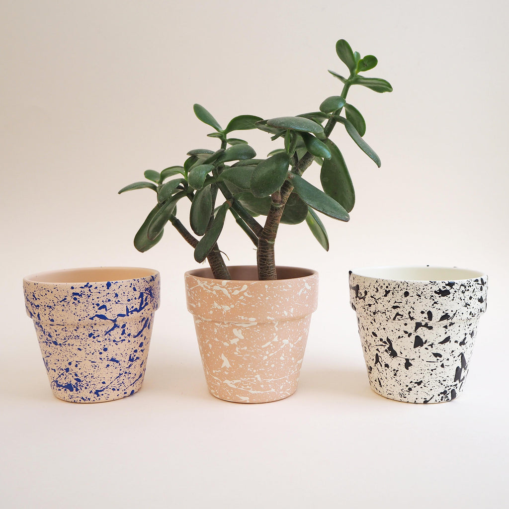 Medium Splatter Plant Pot - Choose your colours