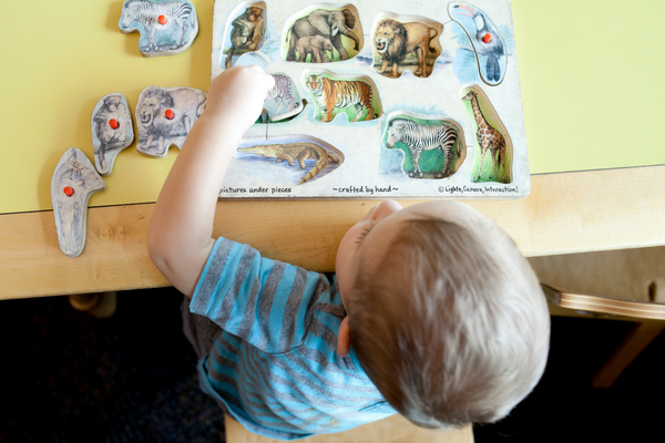 Child completing a dinosaur puzzle