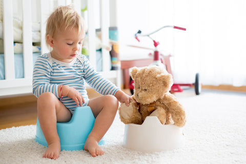 Teaching (Not Training) Toddlers To Toilet