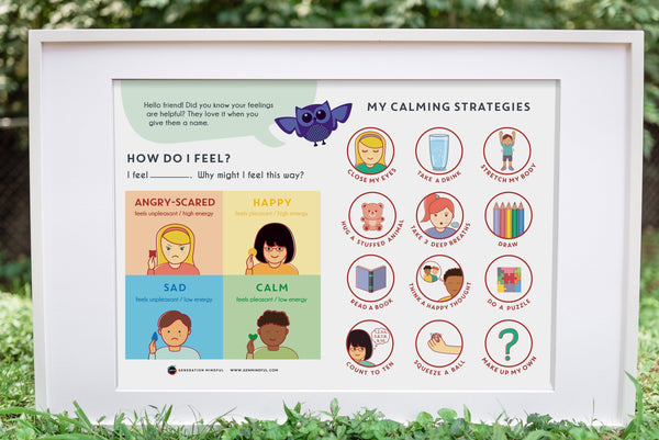 My Calming Strategies Poster (REWARD ADD-ON)