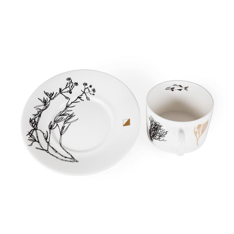 Coral, Fine Bone China Cup & Saucer - Harley Boden