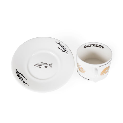 Algae, Fine Bone China Cup & Saucer - Harley Boden