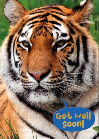 Get Well Soon Colouring Card: Tiger