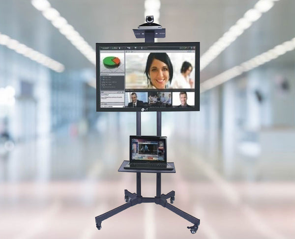 Rife Video Conferencing Trolley LCD TV Floor Stand (VCT01)