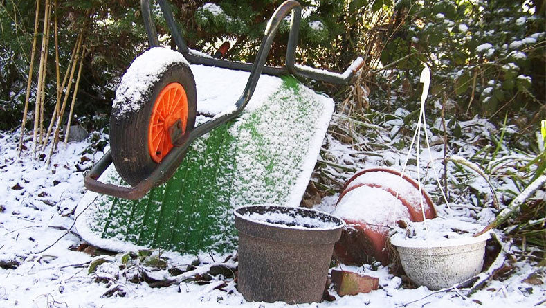 Winter Gardening - A Guide to a Successful Garden