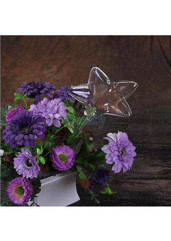 Glass Star Watering Device