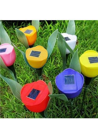 Solar LED Tulip Yard Light