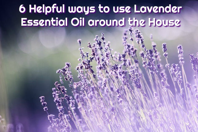 6 Helpful Ways to Use Lavender Essential Oil Around the House
