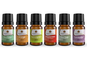 6 Pack Gift Set - 5 Ml (1/6 Oz)