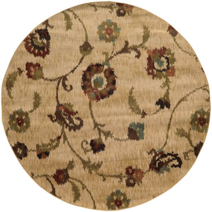 4887B Hudson Indoor Area Rug Tan/Multi