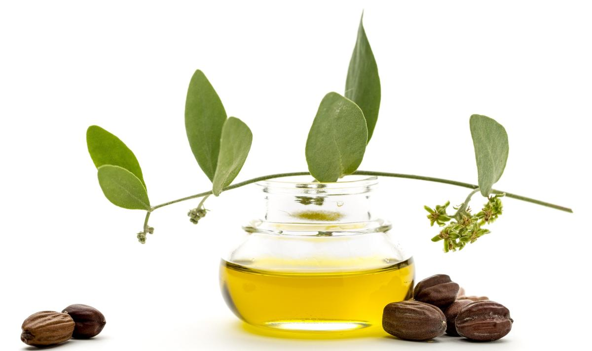 Best Oils for Beards: Organic Jojoba Oil
