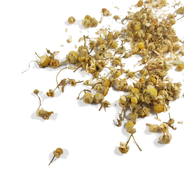 Single Estate English Camomile Flowers