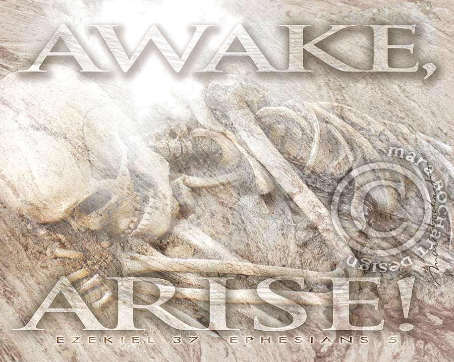 Awake Arise - premium canvas