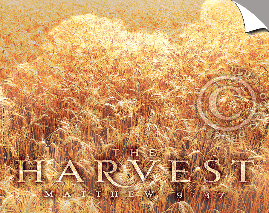 The Harvest - Peel & Stick