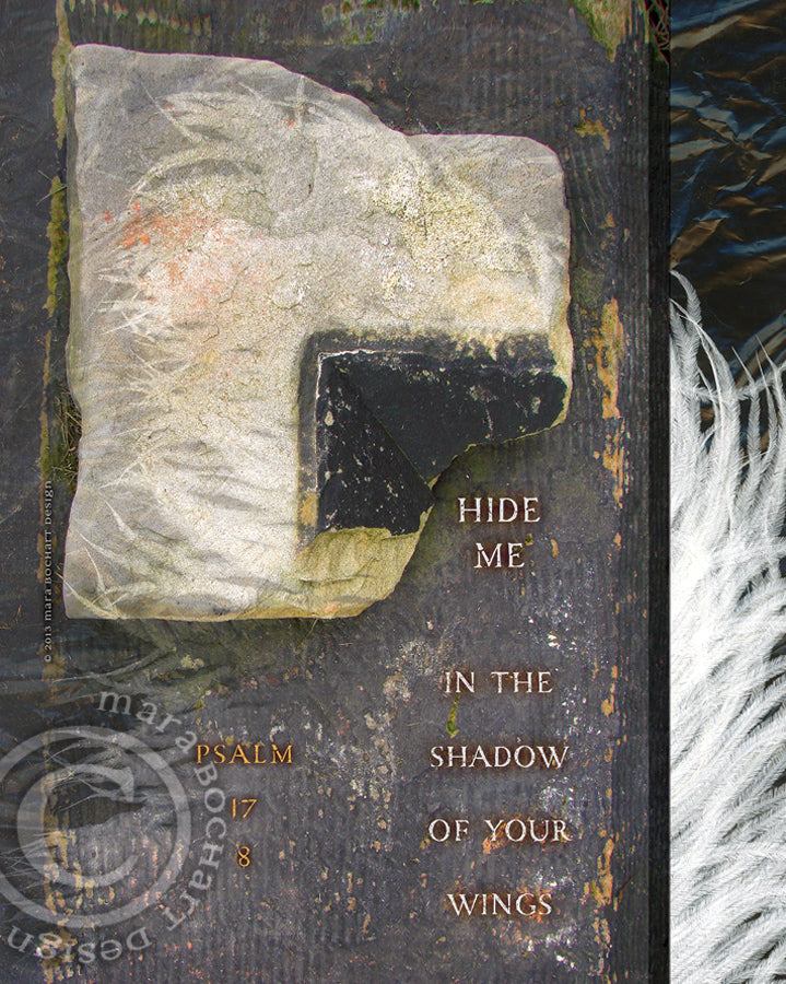Hide Me - canvas