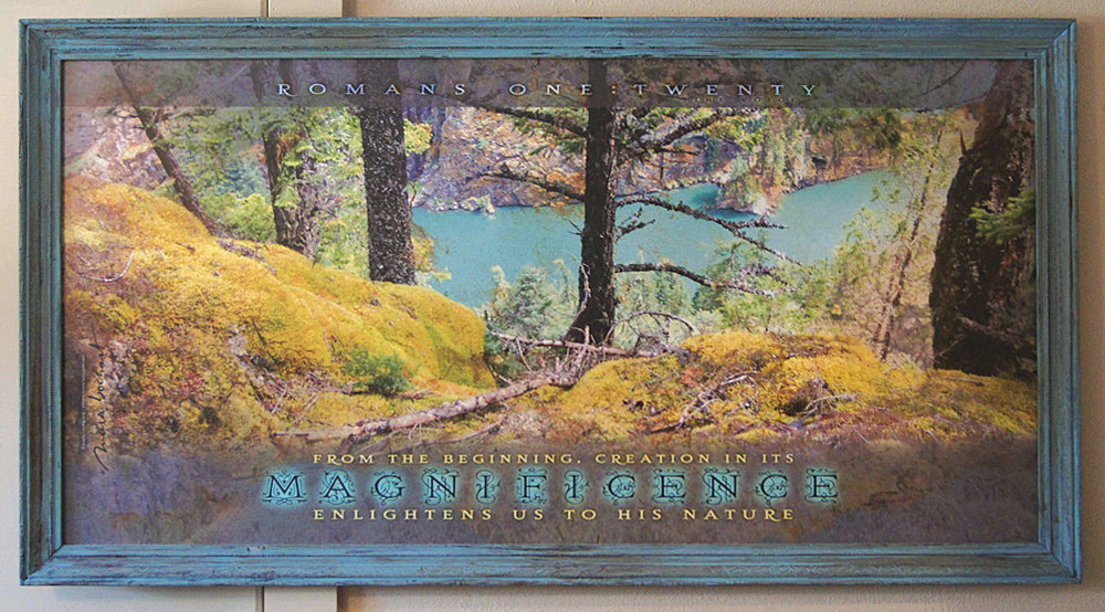Magnificence - framed 51x27