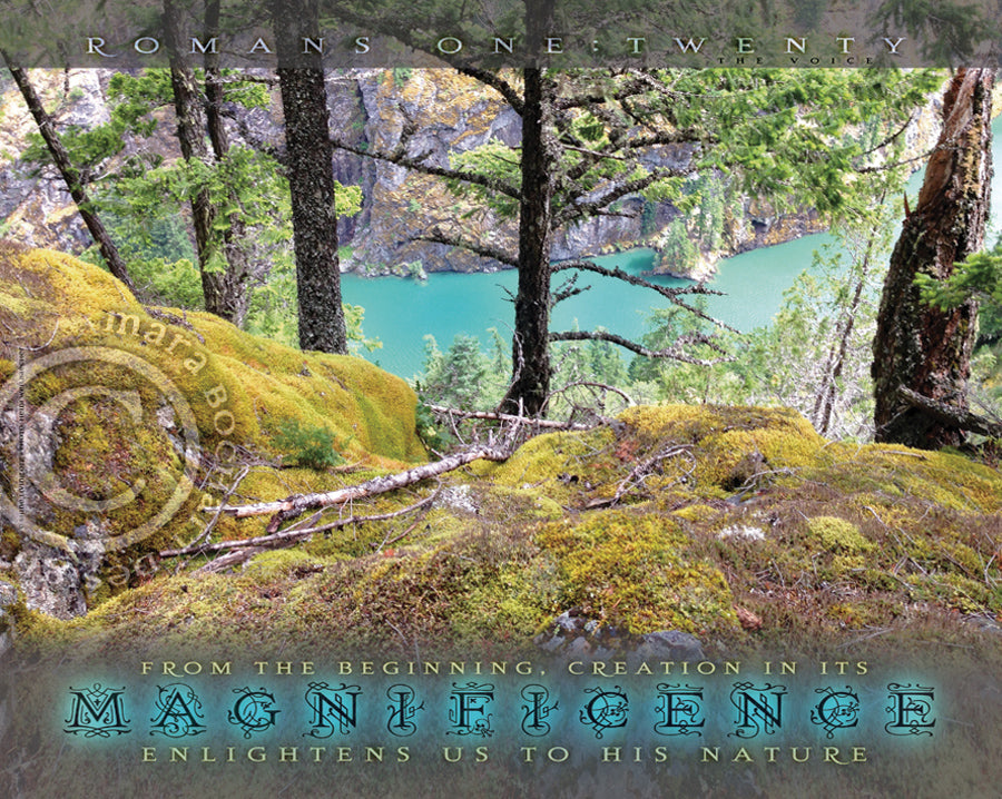 Magnificence - premium canvas