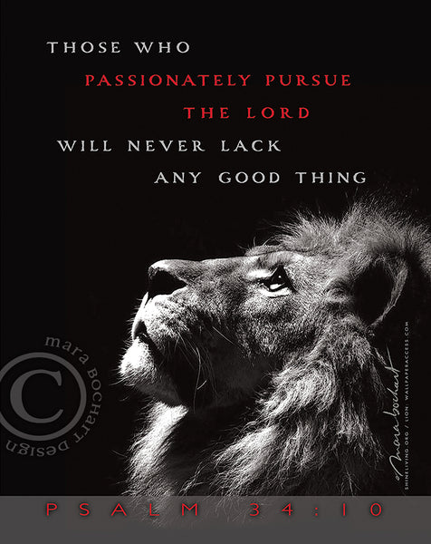 Passionately Pursue