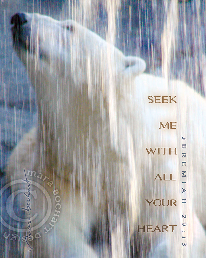 Seek Me - premium canvas