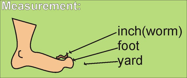Story and visual to help teach measurement terms successfully