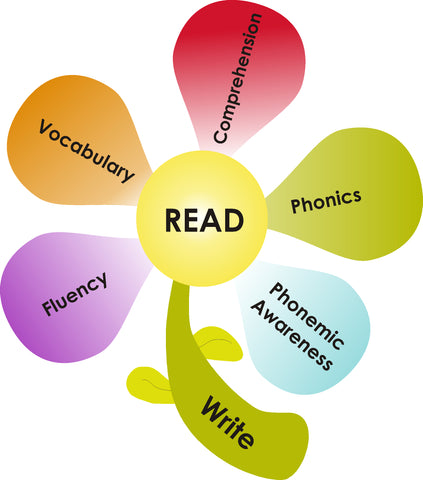 Essential Components of Reading