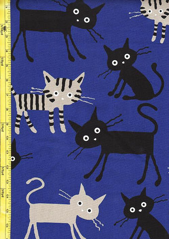 Japanese Novelty - Cocoland Wide Eye Electrified LARGE Cats - Oxford Cloth - ROYAL BLUE
