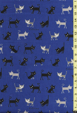 Japanese Novelty - Cocoland Wide Eye Electrified SMALL Cats - Oxford Cloth - ROYAL BLUE