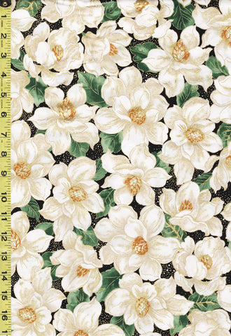Holiday - Timeless Treasures - Beautiful Magnolias - CM7802 - Black