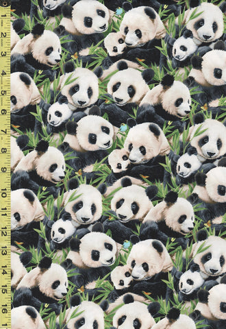 Asian - Panda Family & Floral Bamboo