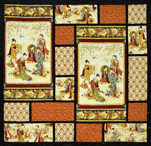 Quilt Pattern Leesa Chandler Designs Panel Magic
