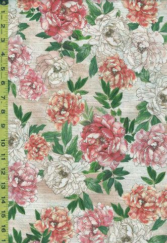 *Asian - Peony Clusters - Peony Dance CD7227 - Pink , Coral & Ivory