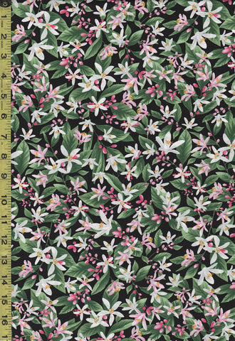 Floral Fabric - Timeless Treasures - Tropical Fruit Flower - C7483 - Black
