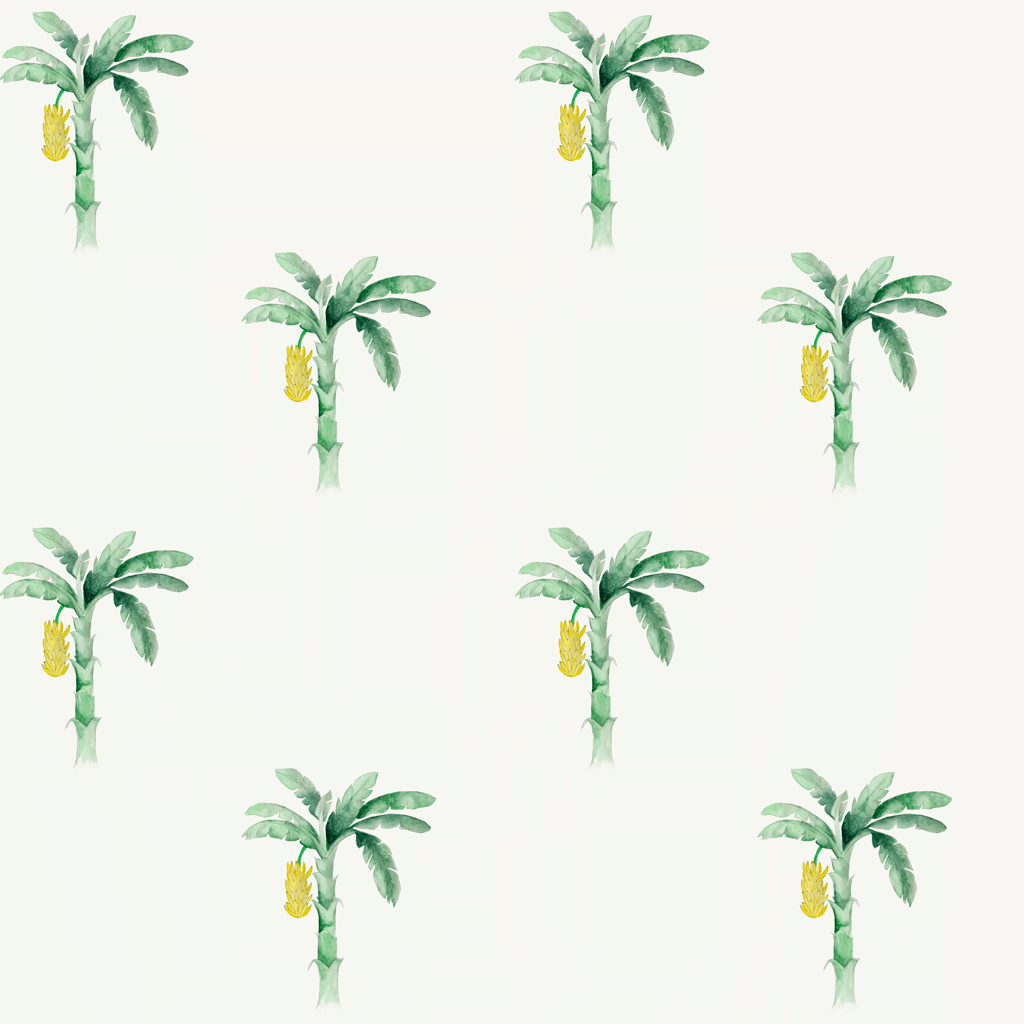 Banana Plant Wallpaper