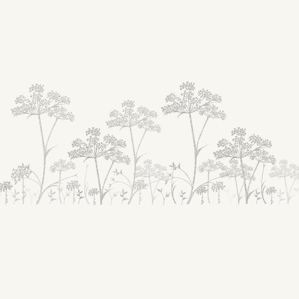 Cow Parsley Stripe Wallpaper