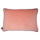 velvet reverse coral feather cushion - stil haven
