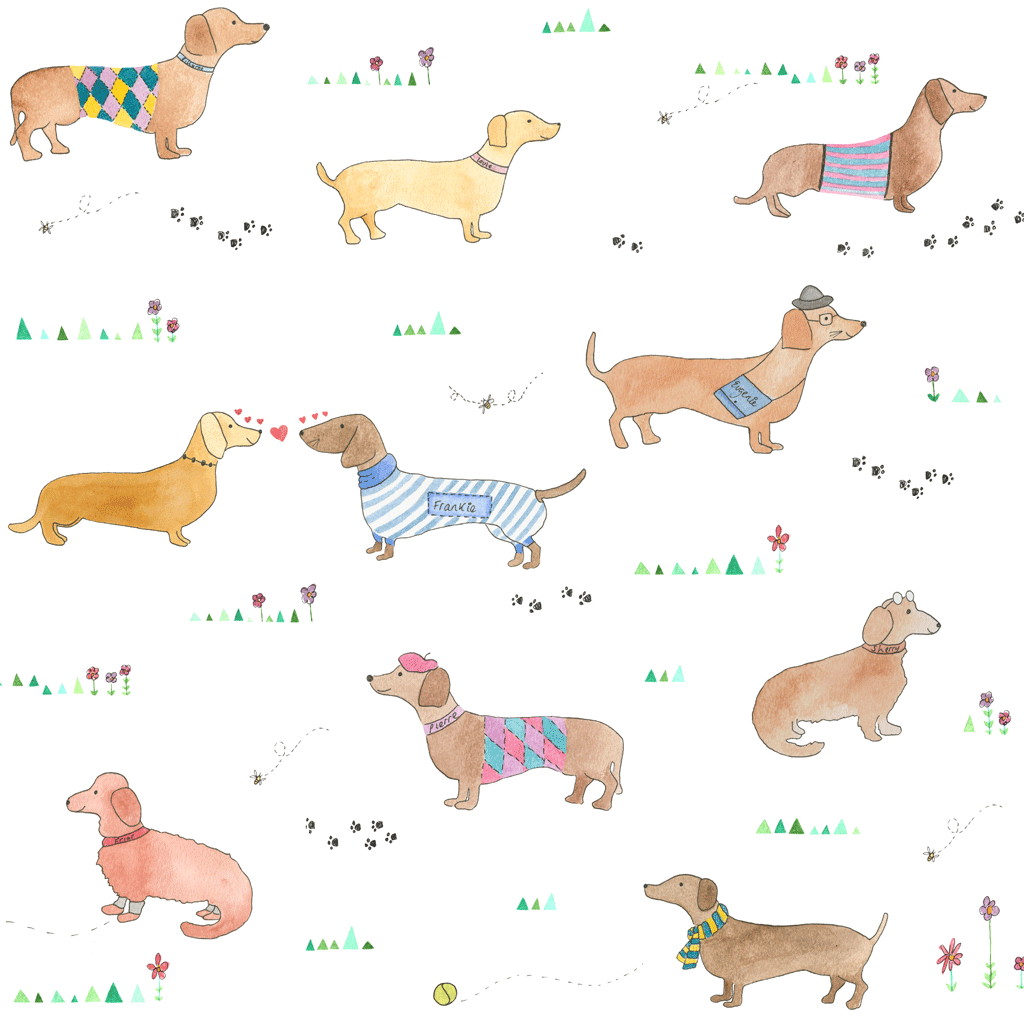 Sausage Dog Wallpaper on dachshund